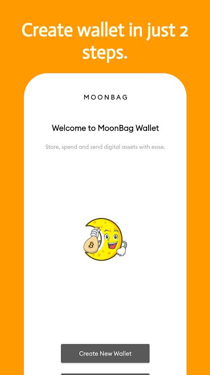 Moonbag wallet 4